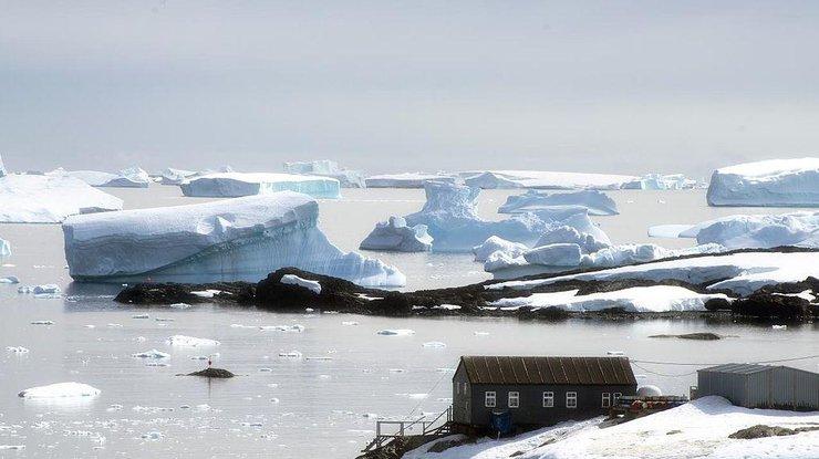 Рекордна кількість бажаючих вирушити в антарктичну експедицію