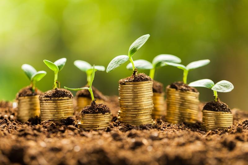 366 мільйонів гривень ренти за використання природних ресурсів
