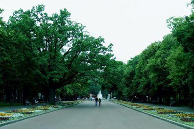 Сад-Шевченко