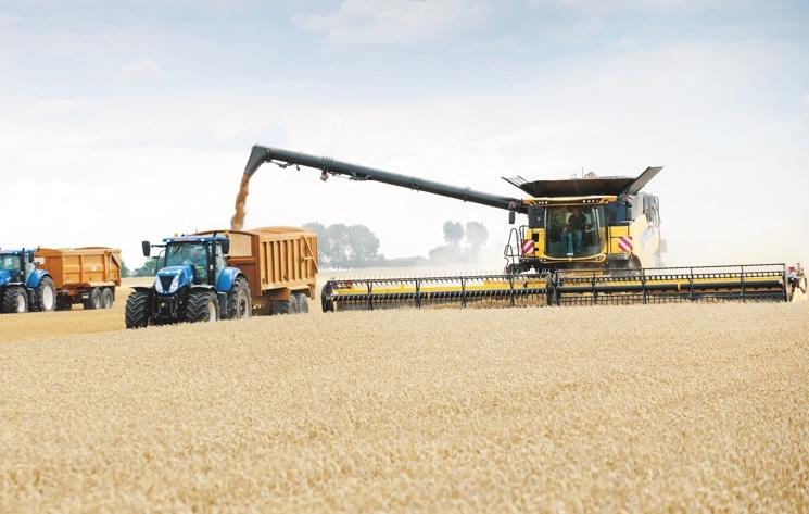 Урожай зерна буде більший ніж минулого року