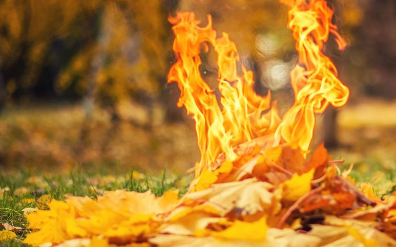 У Новій Водолазі нагадали про штрафи за спалювання листя
