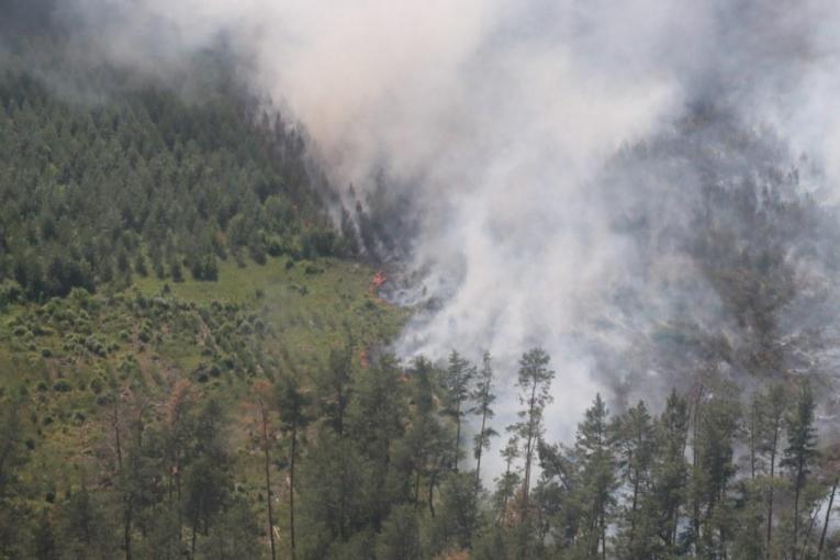 За добу на Харківщині сталося одинадцять пожеж в природних екосистемах
