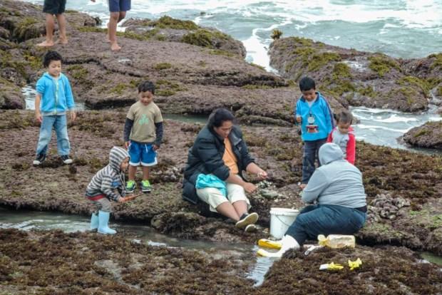 Maori fishing