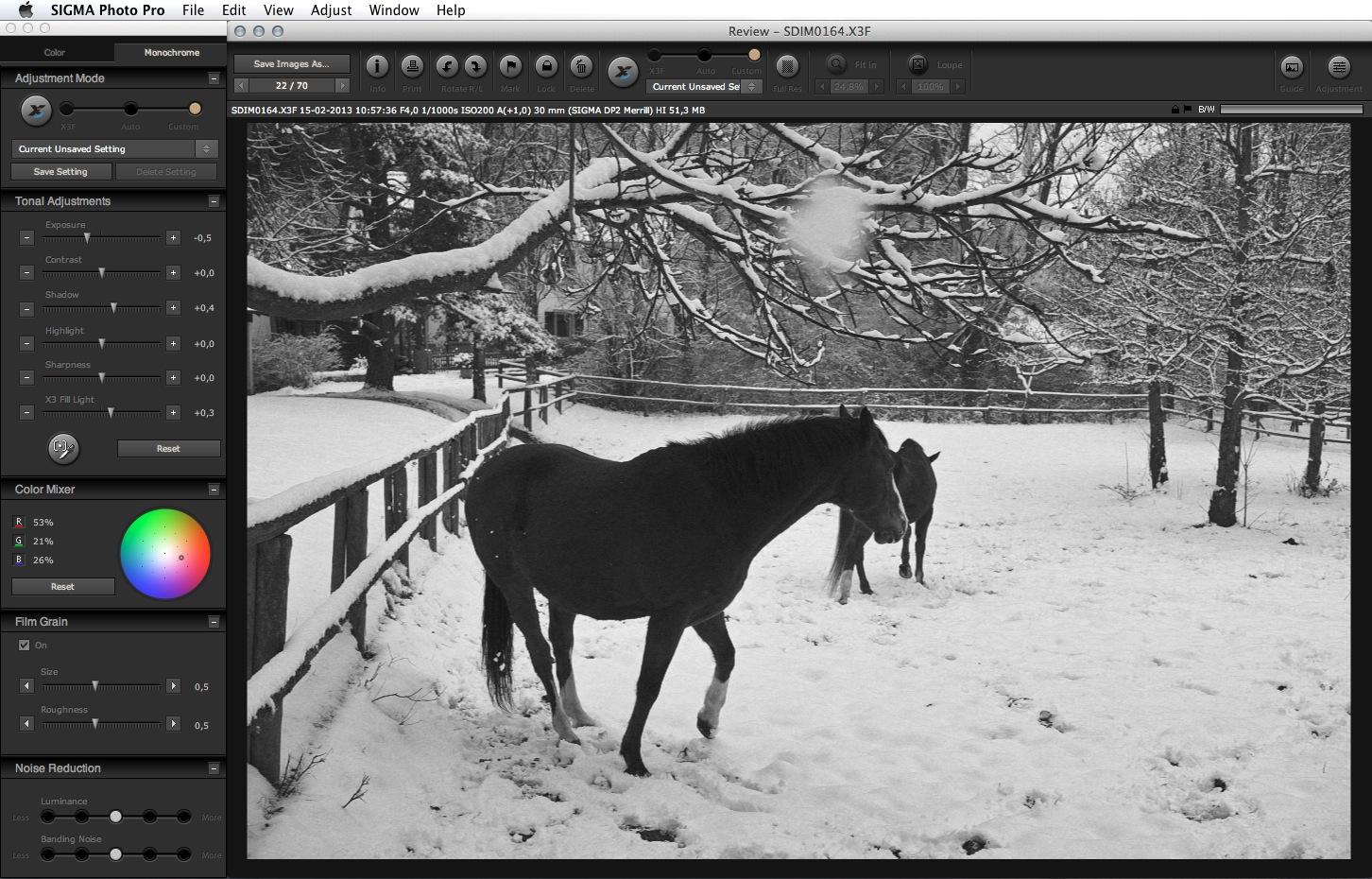 Sigma Photo Pro 5.5 monochrome