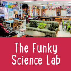 Diy Classroom Chair Covers Crazy Creek Chairs Eye Candy 3 The Funky Science Lab Cult Of Pedagogy