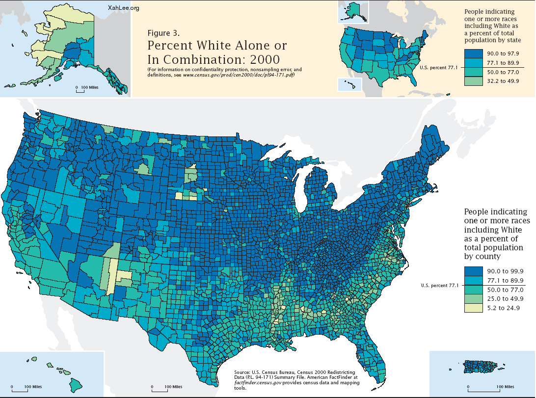 Race Distribution in the USA