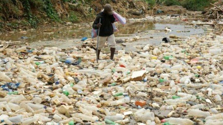 8,3 milliards de tonnes de plastique, ça représente quoi — Environnement