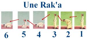 une-rak-a-121fb84