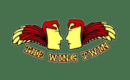 x-wingtwin_02