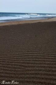 Wind waves on sand