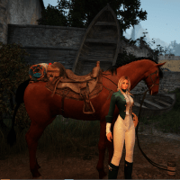 Elder Scrolls Horses in Black Desert