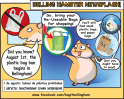Bag Ban info graphic