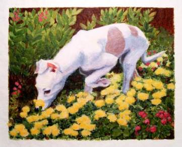 Daisy in the Garden (acrylic on canvas)