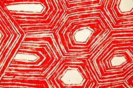 Asurini Tortoiseshell Textile, Amazon