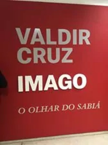 Valdir Cruz Imago o olhar do sabia ctaba