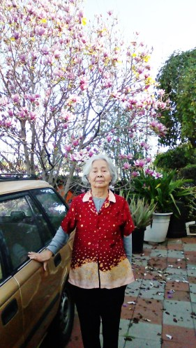 tuyethong-magnolia2