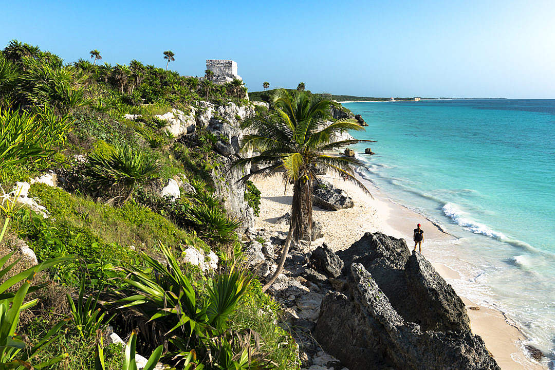 strand met rotsen en palmbomen