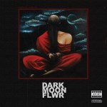 Dark Moon Flower is an album by Shane Eagle and Nasty C