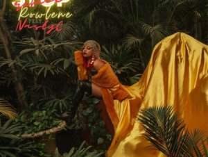 rowlene – stop remix ft nasty c