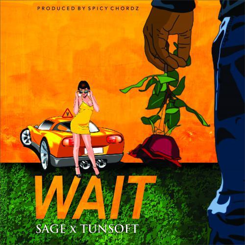 Sage Wait ft Tunsoft
