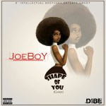 Joeboy Shape of You Cover