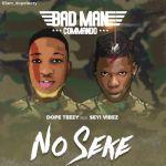 Songs Dope Teezy Ft. Seyi Vibez – No Seke