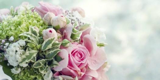 Explore romance with Xclusivity
