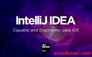 IntelliJ IDEA 2020.2 Crack Torrent With License Server 2020 Free Download