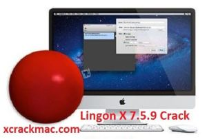 Lingon X 7.5.9 Crack Keygen With Serial Key 2020 (Mac) Free Download