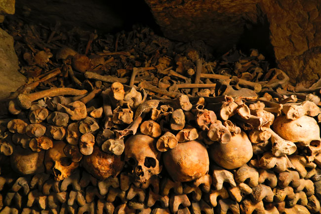 Image result for catacombs of paris
