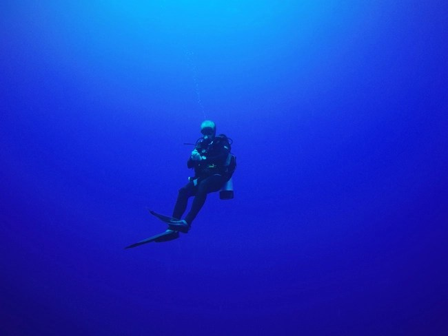 Guided Open Circuit Diving Two Fish Divers