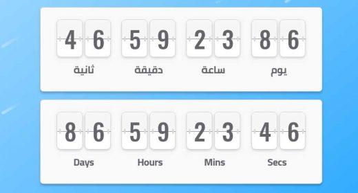 XD Flip timer