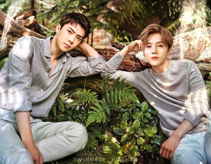 Cover - Do you know about the relationship between Luhan and Sehun?