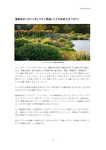 plantscheme_thum