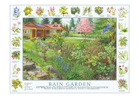 認定雨の庭ポスター表面