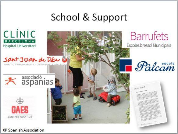 La escuela y el soporte de entidades