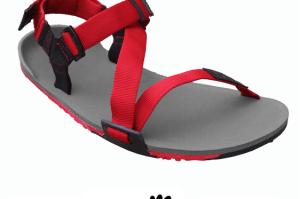 Z-Trail Men's Sandal