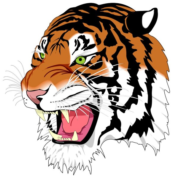 SVG to PDF - Tiger