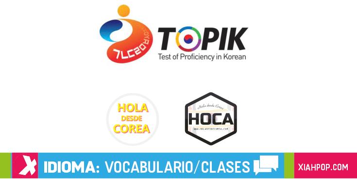 ¿Qué es el Topik? ¡Guía en español antes de hacer el examen!