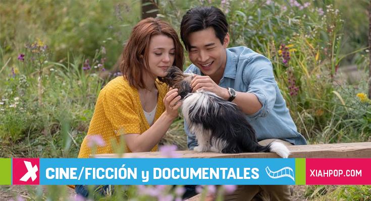 «A Dog's Journey», protagonizada por Henry Lau, arrasa en China