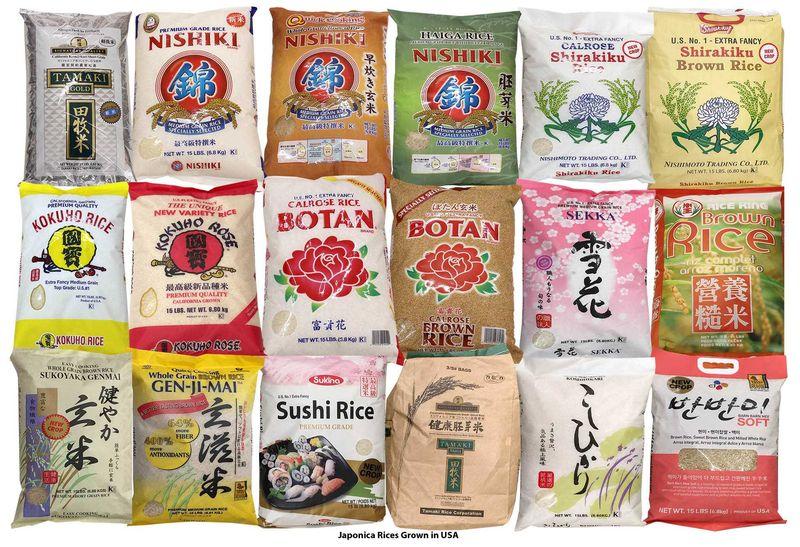 arroz variedades