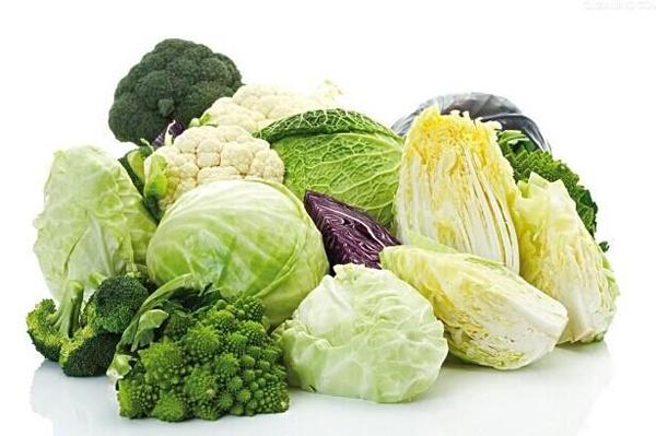 從最近關于十字花科蔬菜的討論所想到的 - 食貴以廣 - 夏氏靜坐法(Xia's Meditation)- 中國傳統養生專家
