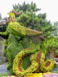 Phoenix topiary at the Summer Palace, Beijng, China.