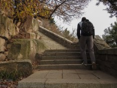 KSM20151018-Sleeping_Dragon-Stairs-10-720px