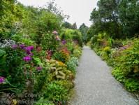 20130818-KSM-Garden_Path-01