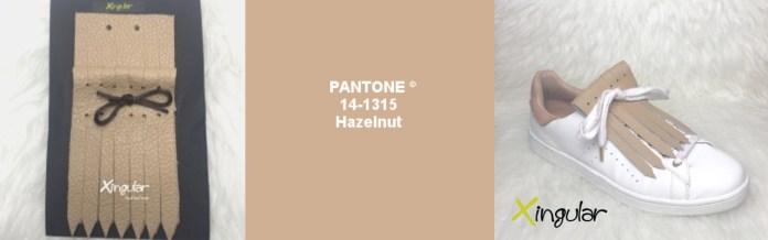 Hazelnut pantone 14-1315 xingular