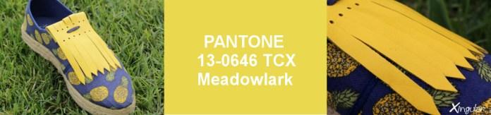 Colores para la Primavera 1 Meadowlark-SS 2018