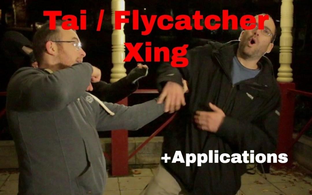 TAI XING – Flycatcher