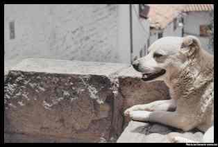 cusco_peru (10)