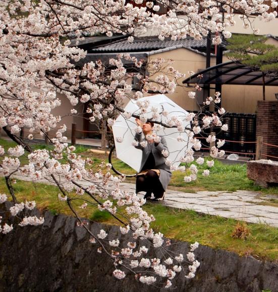 Hanami en Japón - señora haciendo fotos de un cerezo